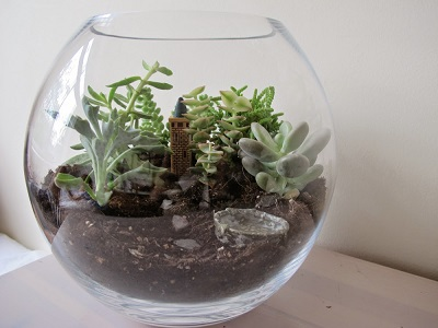 Terrarium workshop Park Orchards